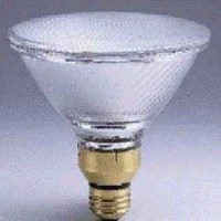 Sylvania Lighting 100W Halogen Flood Par38 By Sylvania Lighting at Sears.com